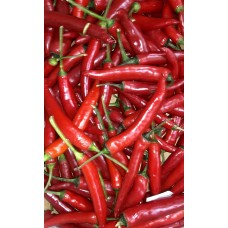 Red Long Chillies x100g pkt