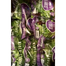 Premier Mixed Baby Leaf Salad Packet