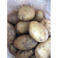 1 KG White Potatoes