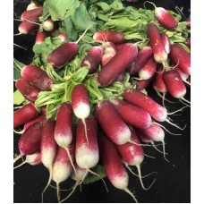 Breakfast Radish per bunch