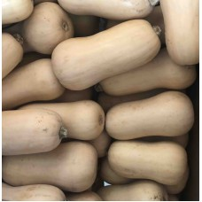 Butternut Squash Each