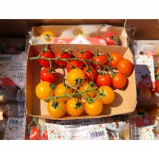 Isle of Wight MIxed Cherry Vine Tomatoes x250g